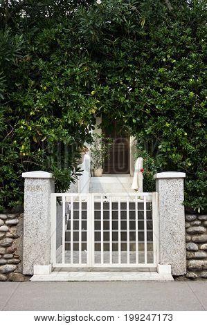 Porch, Steps, Fig Trees Around. The Mediterranean Design.