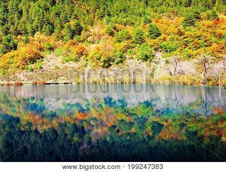 Colorful Fall Woods Reflected In Lake. Amazing Landscape