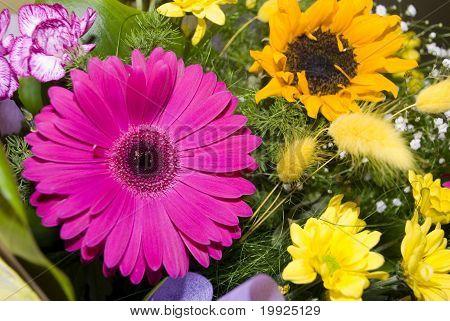 Bouquet Color