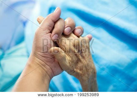 Hand Hold Hand Volitation In Family
