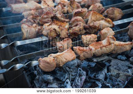 Georgian Mtsvadi On The Grill