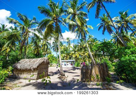 Traditional village with palm tree houses in Mozambique, Africa