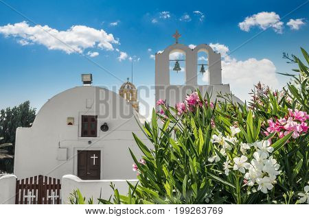 Oia Village, Santorini, Cyclade islands, Greece. Beautiful view of the town with white buildings, blue church's roofs and many coloured flowers.