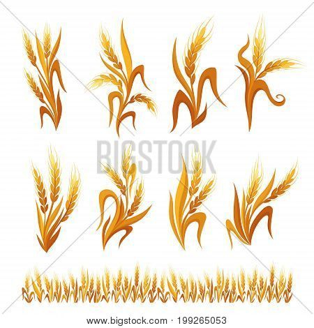 Wheat ears decorations. Cereal spikelets symbols isolated on white background. Design elements for bread packaging beer label or organic grain products