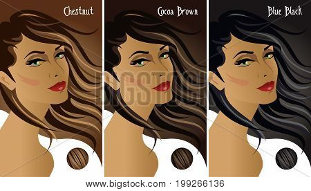 Dark hair colors chart with three different tones