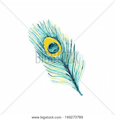 Beautiful hand drawn watercolor peacock feather. Trendy fashion blue colors on white background perfect for tissue fabric and textile or graphic design.