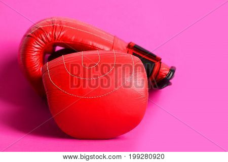 Duet Of Red And Black Gloves For Professional Boxing