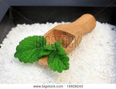 Peppermint in wooden spoon