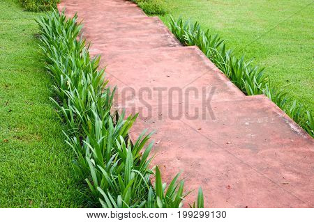 close up walkway in nature garden at Thailand
