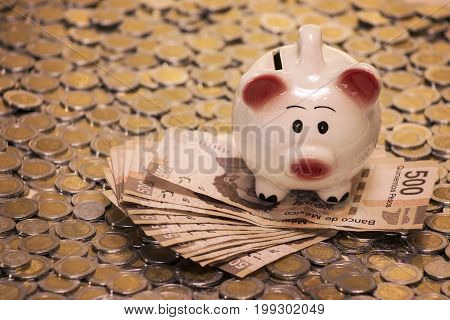 little piggy bank with cash and coins