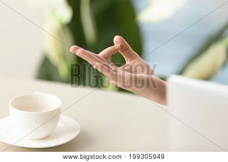 Female hand in chin mudra yogic gesture, peaceful calm woman practices meditation at home office desk with laptop and porcelain cup, yoga at work for relaxation, exercises to reduce stress, close up