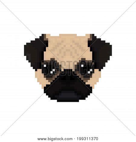 Mops dog head in pixel art style. Vector illustration.