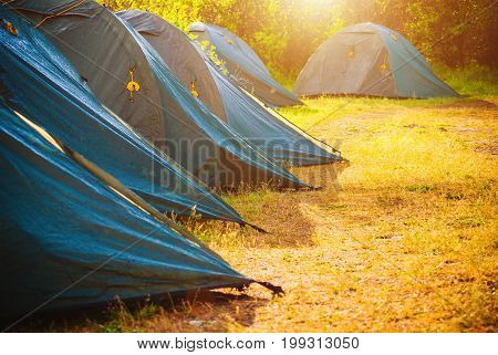 Tents In A Forest. Selective Focus.