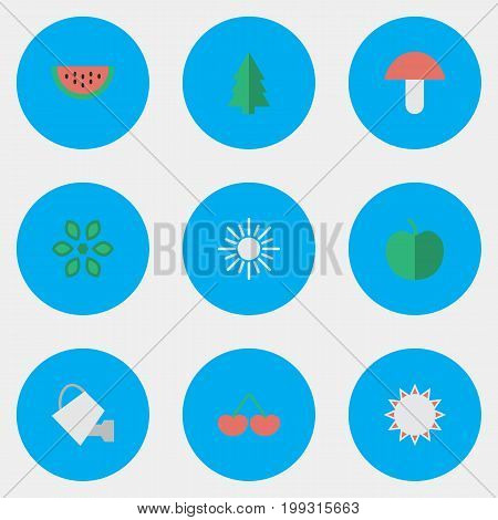 Elements Berry, Bailer, Melon And Other Synonyms Berry, Sunny And Hate.  Vector Illustration Set Of Simple Garden Icons.