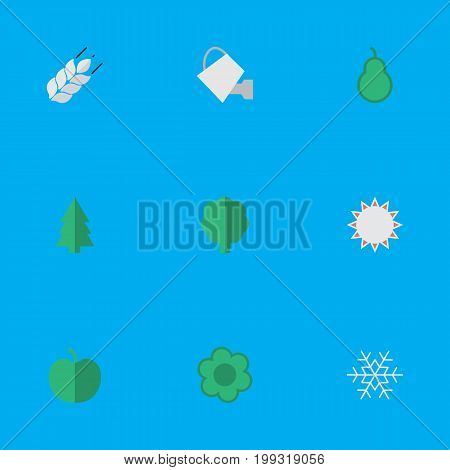 Elements Sunny, Tree, Punching Bag And Other Synonyms Flake, Wood And Apple.  Vector Illustration Set Of Simple Garden Icons.