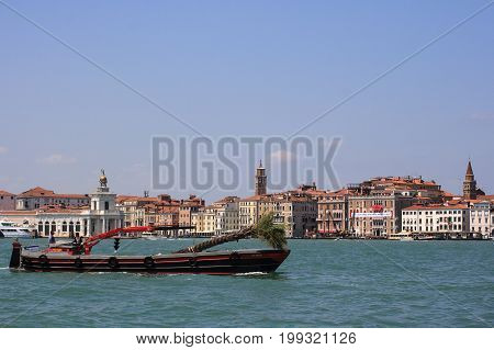 VENICE ITALY - JUNE 07: Boat transporting palm tree on Canal Grande on June 07 2009