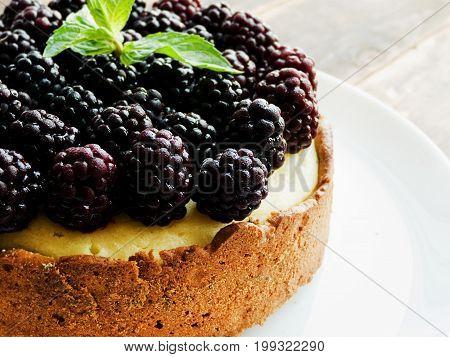 Fresh Baked Cheesecake