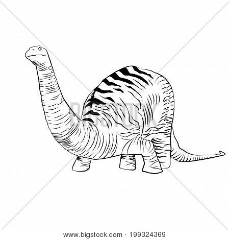Vector - Apatosaurus Black and White Line Drawing Sketch