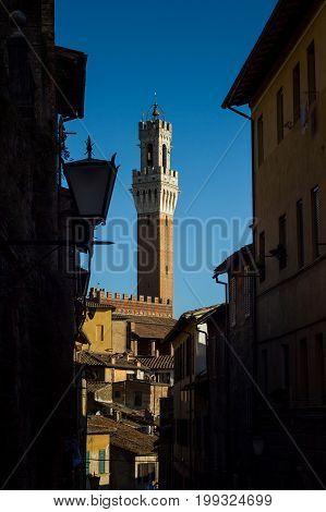 Siena, Tuscany/italy - The Mangia Tower