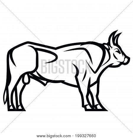 Vector black and white draving - powerful horned bull