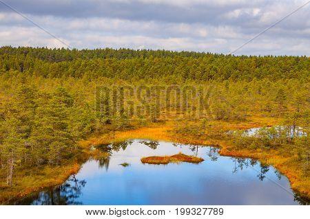 Beautiful lake in swamp land. Viru bogs at Lahemaa national park