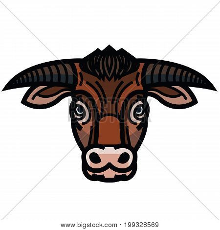 Vector colorful drawing of the head of powerful horned bull