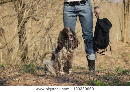 Woman And Brown Cocker Spaniel In The Forest