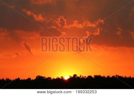 Storm clouds and sunset on forest silhouette background. Nature summer sunlight wallpaper