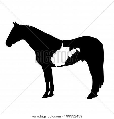 Vector Horse Silhouette with West Virginia Patch Illustration