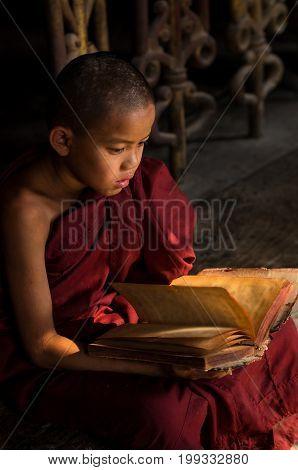 Closeup Buddhist novice reading at Shwenandaw pagoda mandalay myanmar