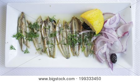 Marinated anchovies filleted fish on a white plate with olive oil, black olives, sliced onion rings, sliced lemon and dill herb.