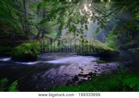 Kamenice river in national park Czech Switzerland