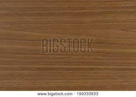 Walnut texture with natural patterns. Extremely high resolution photo.