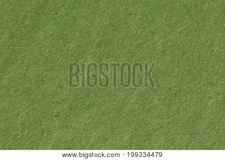 Green paper texture background, macro shot. High resolution photo.