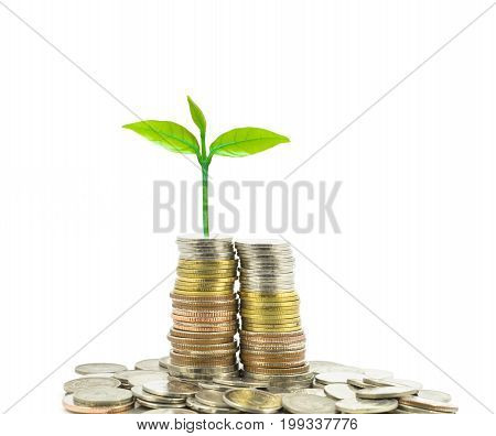 stacks of coins step thai baht on white background