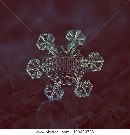 Real snowflake macro photo: large snow crystal of star plate type with six short, broad arms and fine hexagonal symmetry. Snowflake glowing on dark textured background in natural light.