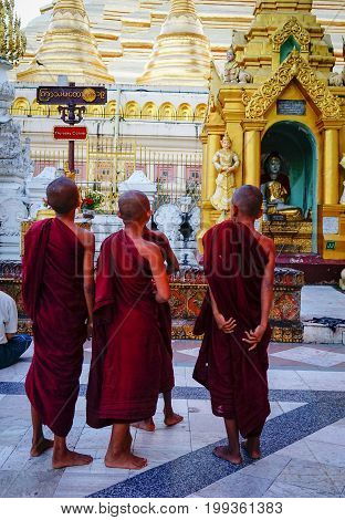 Buddhist Monks At Shwedagon Pagoda