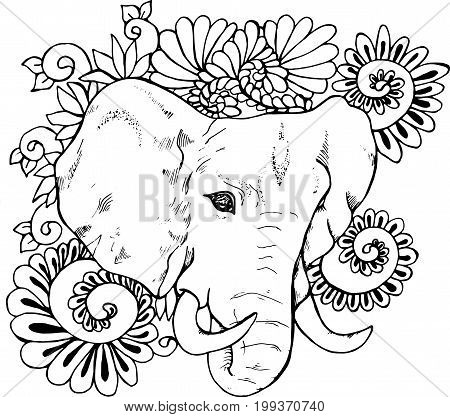 Black and white drawing of an elephant on a background of an ornament. Ganesha indian deity