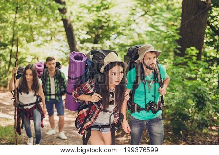 Four Tourists Got Lost In The Forest, Trying To Find The Way, Looking Serious And Focused, All Havin