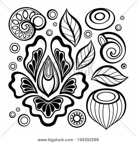Monochrome Set Of Floral Design Elements In Doodle Line Style