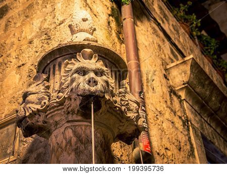 Lions mouth shooting water on a corner in Dubronik