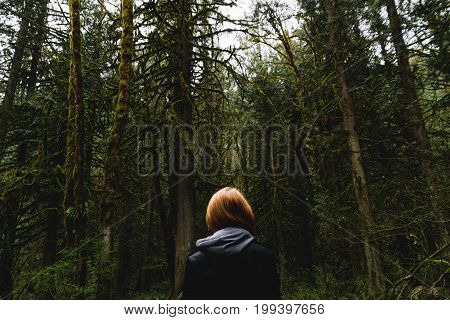 Woman Walking On Empty Path Through Green Forest