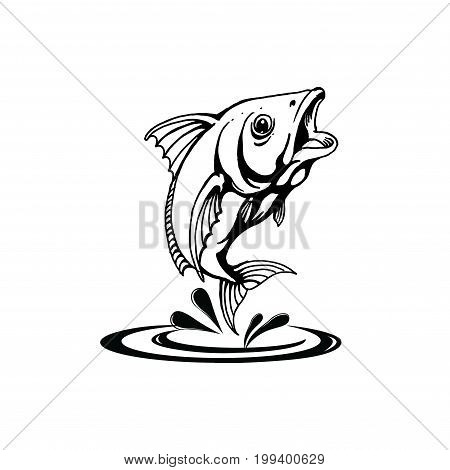 Vector Fish, Fish On A White Background. Bass Fishing Tournaments. Recreation Fishing. Big Fish. Fish Jumping. Beautiful Fish. hand drawing,eps8,eps10