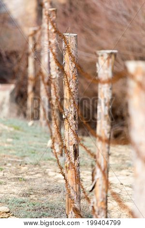 A barbed wire on nature . A photo