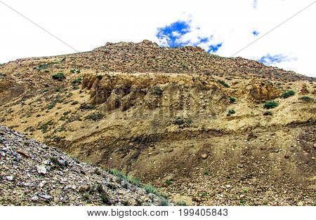 Nature and plant from Annapurna circuit and Mustang area Trekking in Nepal Annapurna circuit and base camp
