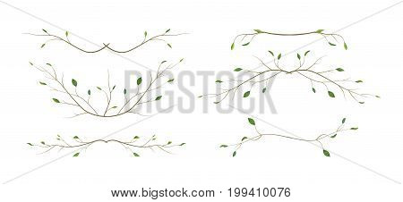 Tree branch twig designer art different foliage natural branches leaves anniversary text page divider elements watercolor style set collection. Vector decorative beautiful various elegant design