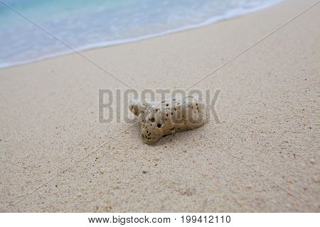 Abstract Background Of Coral On Sandy Beach With Soft Waves And Beach Waves.