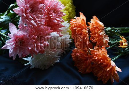 bright chrysanthemums of different colors in a festive bouquet