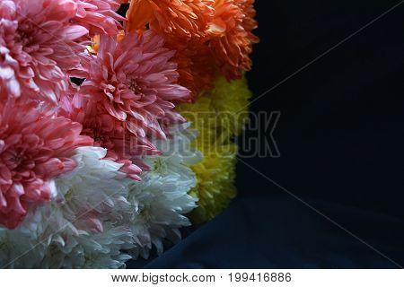 chrysanthemums of vivid colors in festive bouquet