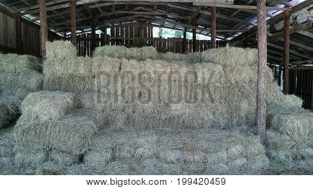 Hay bales stacked in wooden hay barn